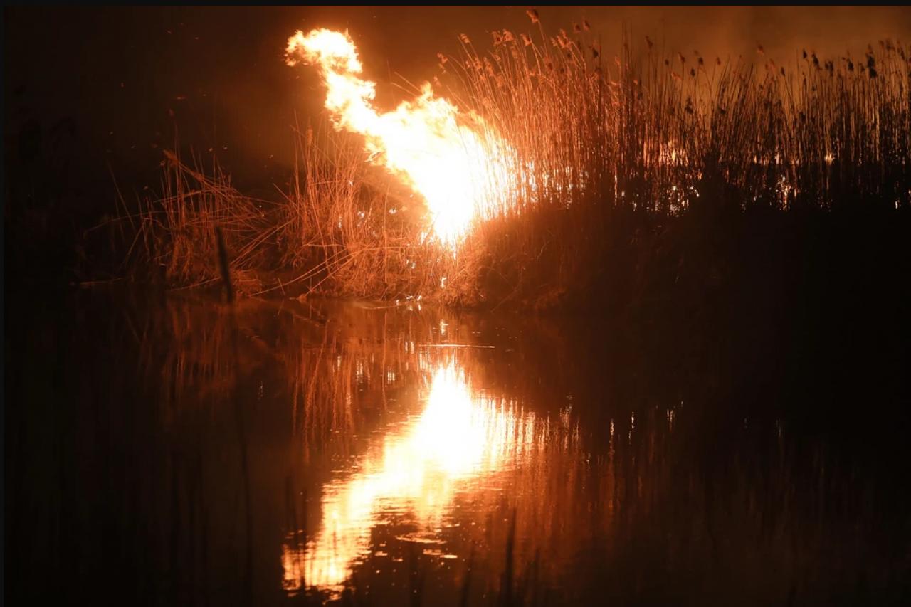 Płonie największy park narodowy w Polsce