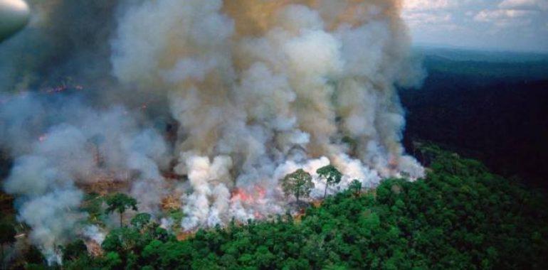 Płoną lasy Amazonii. Największe płuca świata !